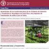 Aprendizajes de las transformaciones de los Sistemas de Extensión y Transferencia Tecnológica de Costa Rica: una propuesta de lineamientos de política para el futuro