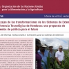 Aprendizajes de las transformaciones de los Sistemas de Extensión y Transferencia Tecnológica de Honduras: una propuesta de lineamientos de política para el futuro
