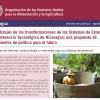 Aprendizajes de las transformaciones de los Sistemas de Extensión y Transferencia Tecnológica de Nicaragua: una propuesta de lineamientos de política para el futuro